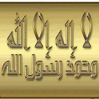 Meher Sfar